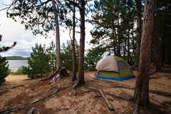Tent Camping Campsite in the Woods Off the Beach Royalty Free Stock Photos