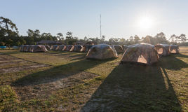 Tent camping on grass with sunlight. Royalty Free Stock Photo
