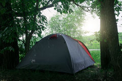 Tent camping in green summer forest Royalty Free Stock Photography