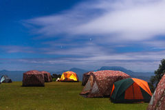 Tent camping on the lawn. Stock Photos