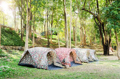 Tent camping. In National park,Thailand Stock Photos