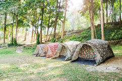 Tent camping. In National park,Thailand Royalty Free Stock Photography