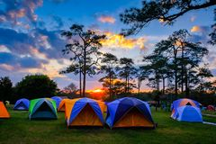 The tent camping on the at sunset on the Phukradueng Thailand. The tent camping on the at sunset on the top Phukradueng Thailand royalty free stock images