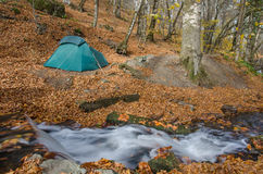 Tent beside a Cascading Brook Stock Images