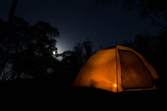 Tent in the dark. A lit tent in the bush with the moon shining through the trees Royalty Free Stock Photo