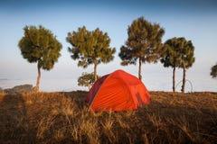 Tent at dawn Royalty Free Stock Image