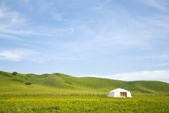 Tent in de weide Royalty-vrije Stock Afbeelding