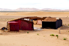 tent in  the desert of morocco   rock  stone Stock Photos