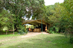 tent för lägervardagsrumsafari Arkivfoto