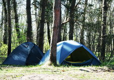 Tent in forest Royalty Free Stock Photography