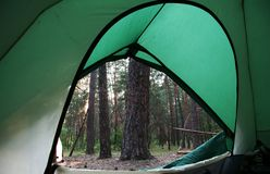 Tent on the forest. Green tent on the forest Royalty Free Stock Image
