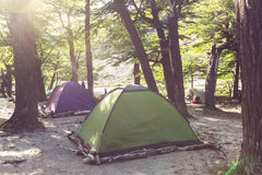 Tent in the forest Stock Photography