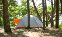 Tent in forest.JH. Tent on camping ground in a forest on the island Gotland in Sweden.JH royalty free stock image