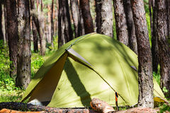 Tent in forest Stock Images