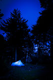 Tent in forest at night Royalty Free Stock Images