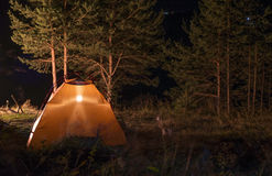 Tent in the forest at night Stock Images