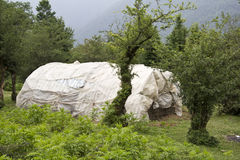 Tent in forest. Traditional plastic tent in forest Royalty Free Stock Photography