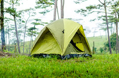 Tent. In the forrest, Thailand Royalty Free Stock Photo