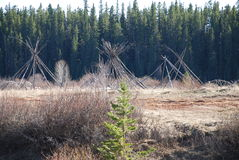 Tent Frames On the Pembina. These tent frames were left standing at the end of a Pow Wow on the banks of the Pembina River in Northern Alberta. They are waiting Stock Image
