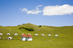Tent in the grassland Royalty Free Stock Images