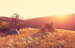 Tent on grassland Royalty Free Stock Photo