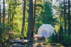 Tent in het bos Stock Afbeeldingen