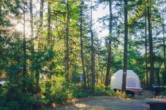 Tent in het bos Stock Foto