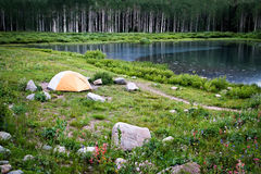 Tent By Lake and Wildflowers Stock Photos