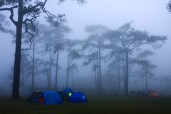 Tent and the mist Royalty Free Stock Photos