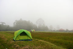 Tent in the mist at camping site Stock Image
