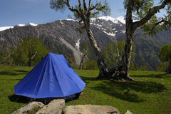 Tent in the mountains. A single blue tent in the Himalayas, with the mountains in the background royalty free stock image