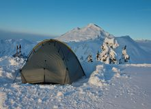 Tent and Mt. Baker Stock Image