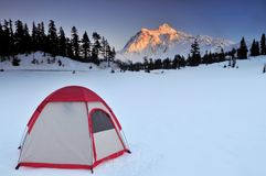 Tent and mt shuksan Stock Image
