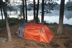 Tent in a national park. A tent close to the lake in early morning hours, early, orange tent with trees around, tree trunks, pine, pines, pine cones, forest Royalty Free Stock Images