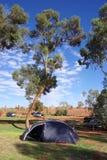 Tent near Uluru. A tent pitched in the shade of a desert oak at the Uluru (Ayers Rock) campground, near Uluru – Kata Tjuta National Park, Northern Territory Royalty Free Stock Photography