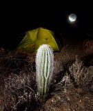 Tent in night Royalty Free Stock Photo