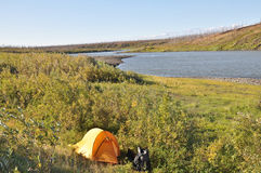 Tent op de rivierbank stock afbeeldingen