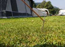 Tent peg securing the rope of a tent on a campinpground. Iron tent peg hammered in the grass of a camping pitch. Tents in the background Royalty Free Stock Photography