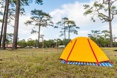 Tent in Phukradueng National Park Stock Photos