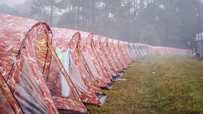 Tent in Pine Forest and Foggy Royalty Free Stock Photography