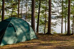 Tent in a pine forest overlooking. royalty free stock photos