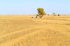 Tent in Sahara desert in Sudan Royalty Free Stock Image