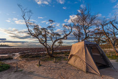 Tent on the shores of the pink Lake Crossbie. At sunset. Victoria, Australia Royalty Free Stock Photography