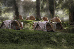Tent sleeping in the forest at dawn. Royalty Free Stock Photo