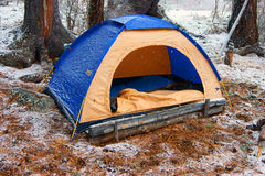 Tent in snow wood Royalty Free Stock Image