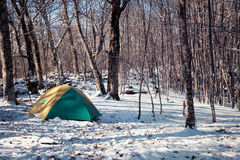 Tent in a snowy forest Royalty Free Stock Photography