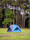 Tent sojourn in nature Royalty Free Stock Photos