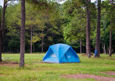 Tent sojourn in nature Stock Photography