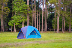 Tent sojourn in nature Royalty Free Stock Image