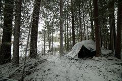 Tent standing in the woods in the snow Stock Photo